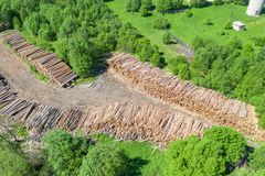 Logging, log cabin trunks of conifers, top aerial view.  stock images
