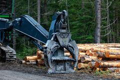 Logging machinery with cut logs in the forest