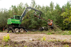 Logging. In Mobile County Alabama Stock Image