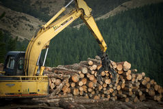 Logging in New Zealand Stock Photography