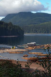 Logging Operation. On Vancouver Island, Canada Royalty Free Stock Photography