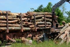 Logging operation Royalty Free Stock Photo
