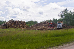 Logging operations Stock Images