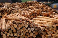 Logging plant Stock Images
