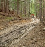 Logging road with a red vehicle Stock Image
