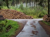 Logging, South Bohemia. Czech Republic Stock Photo