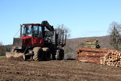 Logging Or Timber Industry Transport. An empty timber truck with hydraulic arm and claw  stands on freshly cleared earth alongside large stockpiles of newly Stock Photo