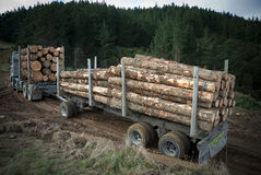 Logging truck Royalty Free Stock Image