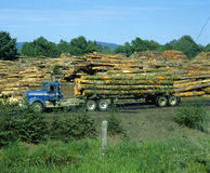 Logging truck Royalty Free Stock Photos