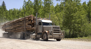 Logging truck. Loaded logging truck with swirling dust driving down a backcountry forest dirt road in America Stock Image