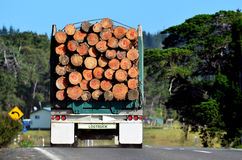 Logging truck. During transportation in Northland New Zealand Stock Images