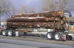 A logging truck Stock Photos