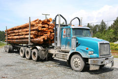 Logging truck Stock Image