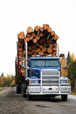 Logging truck. Blue logging truck carrying a large load of logs Royalty Free Stock Photos