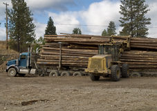 Logging truck being unloaded Royalty Free Stock Photo