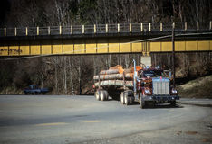 Logging truck delivering timber to sawmill, Stock Photos