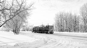 Logging truck. An eighteen wheel truck hauling a load of cut logs down a street through a small town in black and white winter landscape Stock Images