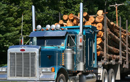 Logging truck with full load.
