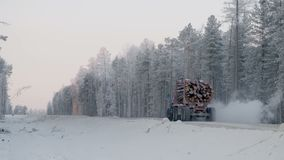 Logging truck with full load of timber drives on winter dirt road on background of snowy forest stock video