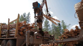 Logging Truck at Lumber Mill loads tree trunk stock video footage