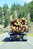 Logging truck on mountain highway Stock Image