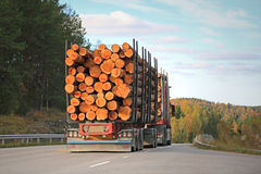 Logging Truck on Rural Road. Rear view of logging truck on rural road with full load of timber Stock Photography