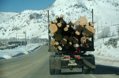 Logging truck on snowy roads Stock Images
