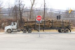 Logging truck. Truck carrying wood or log. stock photography