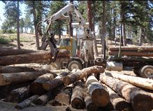 Logging Truck Using Lifter Tongs To Load. This is an image of lifting tongs being used to load cut logs onto a logging truck royalty free stock images