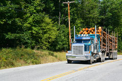 Logging truck,vehicle on highway Royalty Free Stock Images