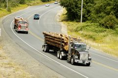 Logging Trucks. Truckloads of logs being transported to the sawmill Royalty Free Stock Image