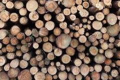 Logging in yorkshire. Logging industry in yorkshire uk stock image