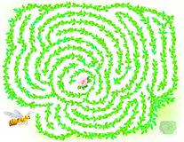 Logic puzzle game with labyrinth for children and adults. Help the bee find the way till the flower. Vector cartoon image. Scale to any size without loss of Stock Photo