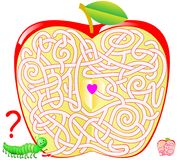 Logic puzzle game with labyrinth for children and adults. Help the caterpillar find the way to the center of the apple. Vector cartoon image. Scale to any size Royalty Free Stock Images