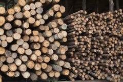 Login houten winkel Stock Afbeelding
