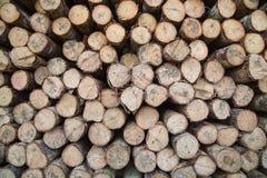 Login houten winkel Royalty-vrije Stock Afbeeldingen