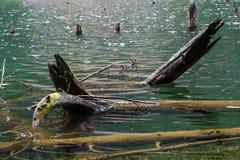 Login water stock fotografie