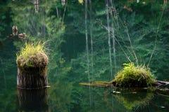 Login water stock foto
