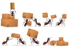 Logistica di ordine di posta di consegna del pacchetto Fotografie Stock Libere da Diritti