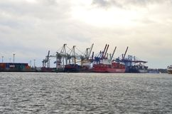 Logistics and cranes at the Hamburg harbor Stock Photo