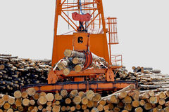Loglift crane transferring logs to log stack Stock Photo