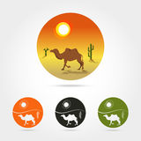 Logo abstrait d'isolement de désert Photo stock