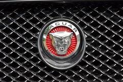 Logo av Jaguar XF Arkivfoto