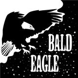 Logo with bald eagle and lettering Royalty Free Stock Image