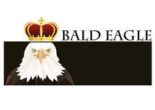 Logo bald eagle Stock Images