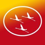 Logo Banner Image Flying Flamingo-Vogels in Ovale Vorm op Geeloranje Achtergrond stock illustratie
