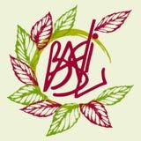 Logo basil. Logo from basil leaves basil, inscription, vector illustration Royalty Free Stock Photography