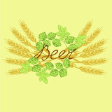 Logo beer. Label beer with hop and wheat Stock Images