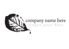 Logo in bianco e nero della foglia Fotografia Stock Libera da Diritti