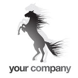 Logo Black Horse. Logo for your company. Black rising horse Royalty Free Stock Images